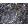 山東供應人工種植黑皮雞樅菌菌棒