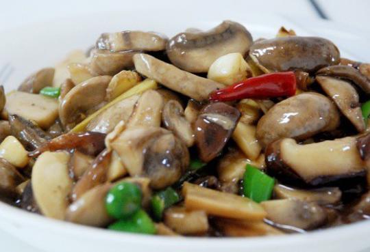 蚝油火焰蘑菇龟吃猪肉么图片