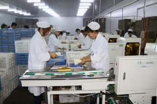 众兴菌业中签结果出炉 共计6.71万个