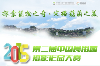 2015第二届中国食用菌摄影作品大赛官网