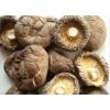 干香菇批发、新鲜香菇批发价格、花菇批发、香菇批发价格、新鲜