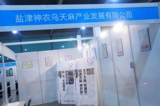 B:盐津神农乌天麻产业发展有限公司 ()