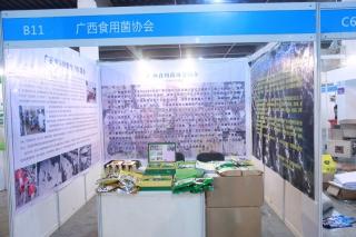B11:广西食用菌协会 ()
