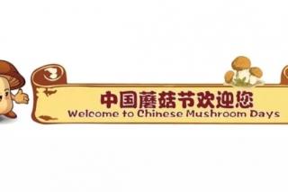 璀璨星光耀闽南,蘑菇之火燎神州 ——第九届中国蘑菇节亮点