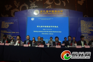 福建漳州:2014年食用菌产业总产值达90.6亿元 形成日趋完善的产业链群