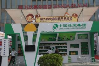 T01 中国绿宝集团 ()