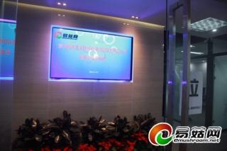 裕国菇业莅临易菇网共商2015中国·随县香菇节事宜