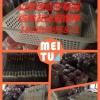 高温平菇菌种 秀珍菇菌种及出菇菌棒供应