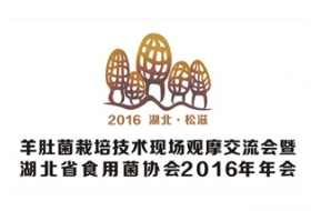 2016羊肚菌栽培技术现场观摩交流会暨湖北省食用菌协会2016年年会