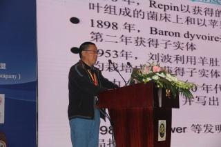赵永昌研究员:羊肚菌栽培的历史、现状和未来——羊肚菌产业的困境和前景 (2)