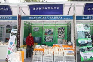 A65:蓬溪县琪英菌业公司 (3)