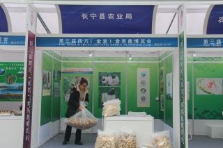 A68:长宁县农业局 (3)