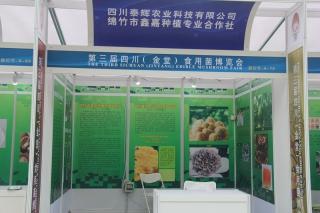 A70:四川泰辉农业科技有限公司绵竹市鑫嘉种植专业合作社 (3)