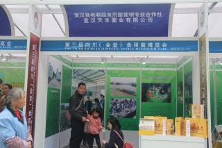A75:宣汉县老君菇食用菌营销专业合作社 宣汉天丰菌业有限公司 (3)