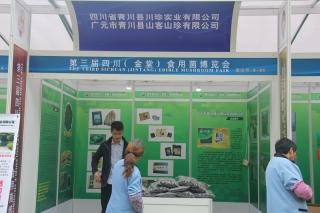 A80:四川省青川县川珍实业有限公司 广元市青川县客山珍有限公司 (3)