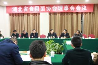 湖北省食用菌协会年会 ()