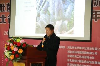 贺新生:羊肚菌生物学基础与高产栽培技术 ()