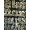 杏鲍菇出菇网格架,河北安平厂家