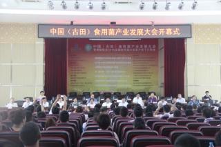 中国(古田)食用菌产业发展大会开幕式 (13)