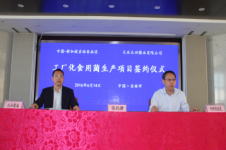 眾興菌業工廠化食用菌項目正式落戶中國-新加坡吉林食品區
