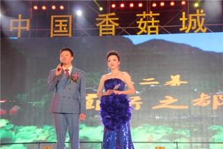 庆元香菇文化节文艺晚会之二 (123)
