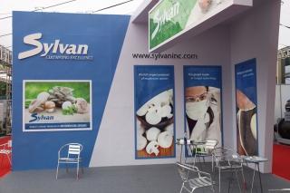 T12 SYLVAN INC (4)