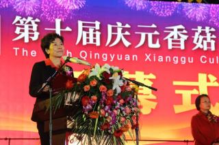 庆元香菇文化节开幕式领导嘉宾致辞 (17)
