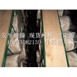 哪里买精良的蘑菇网片 |杏鲍菇网格