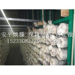 平菇网片 大量供应各种优质的杏鲍菇网片