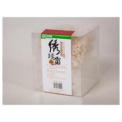 哪儿有鲜嫩的绣球菌批发市场_福建绣球菌