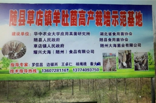 参观考察:随州红云野生菌专业合作社 (9)