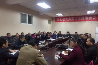 湖北省betvlctor伟德协会理事会议 (2)