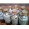 贵州金耳种厂家大量批发金耳菌种优质金耳菌种食用菌优质母种原种