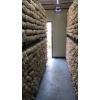 秀珍菇养殖工厂