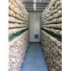 智能化食用菌种植箱房,人工气候室,蘑菇种植房。
