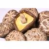 大山合直销批发各种香菇,品种齐全;规格齐全菇盖大小,菇脚长短