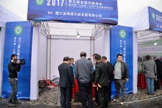 德江县绿通天麻发展有限公司 (2)