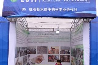 旺苍县水磨中药材专业合作社 (2)