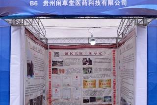 贵州闲草堂医药科技有限公司 (1)