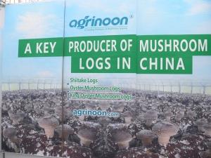 B02:安农(福建)生态农业有限公司 (5)