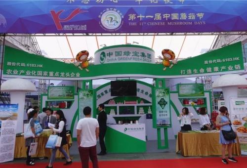 第11回中国キノコ節開幕特集展は歴代最多を