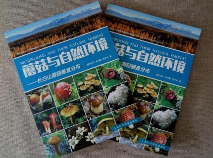 《金沙城与生态环境:长白山金沙城垂直分布》出版发行 易菇商城可选购