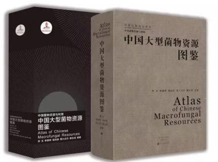 国家十二五重点规划图书《中国大型菌物资源图鉴》