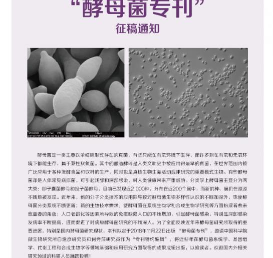 """《菌物学报》""""酵母菌专刊""""征稿通知"""