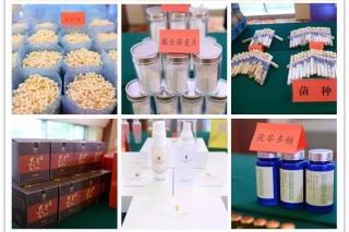 华中农业大学食药用菌科技成果发布活动在武汉举行 学府产品走进寻常百姓家 ()