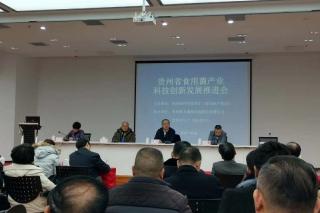贵州省食用菌技术服务平台成立 将有效解决高层次人才缺乏、技术推广人才缺少等难题 ()