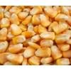 汉江养殖场求购玉米黄豆豆饼豆粕菜粕米糠粕等各种饼粕类