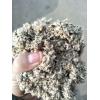 常年供應新疆優質棉籽殼
