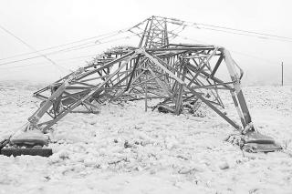 冬季雨雪天气betvlctor伟德防冻害措施