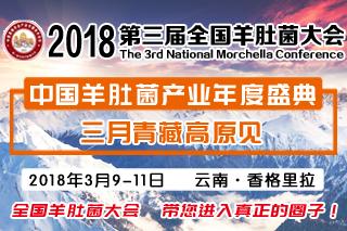 2018第三届全国羊肚菌大会官网 (29)